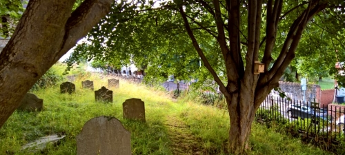 The Living Churchyard